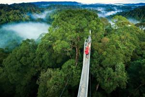 Brunei_Photo1