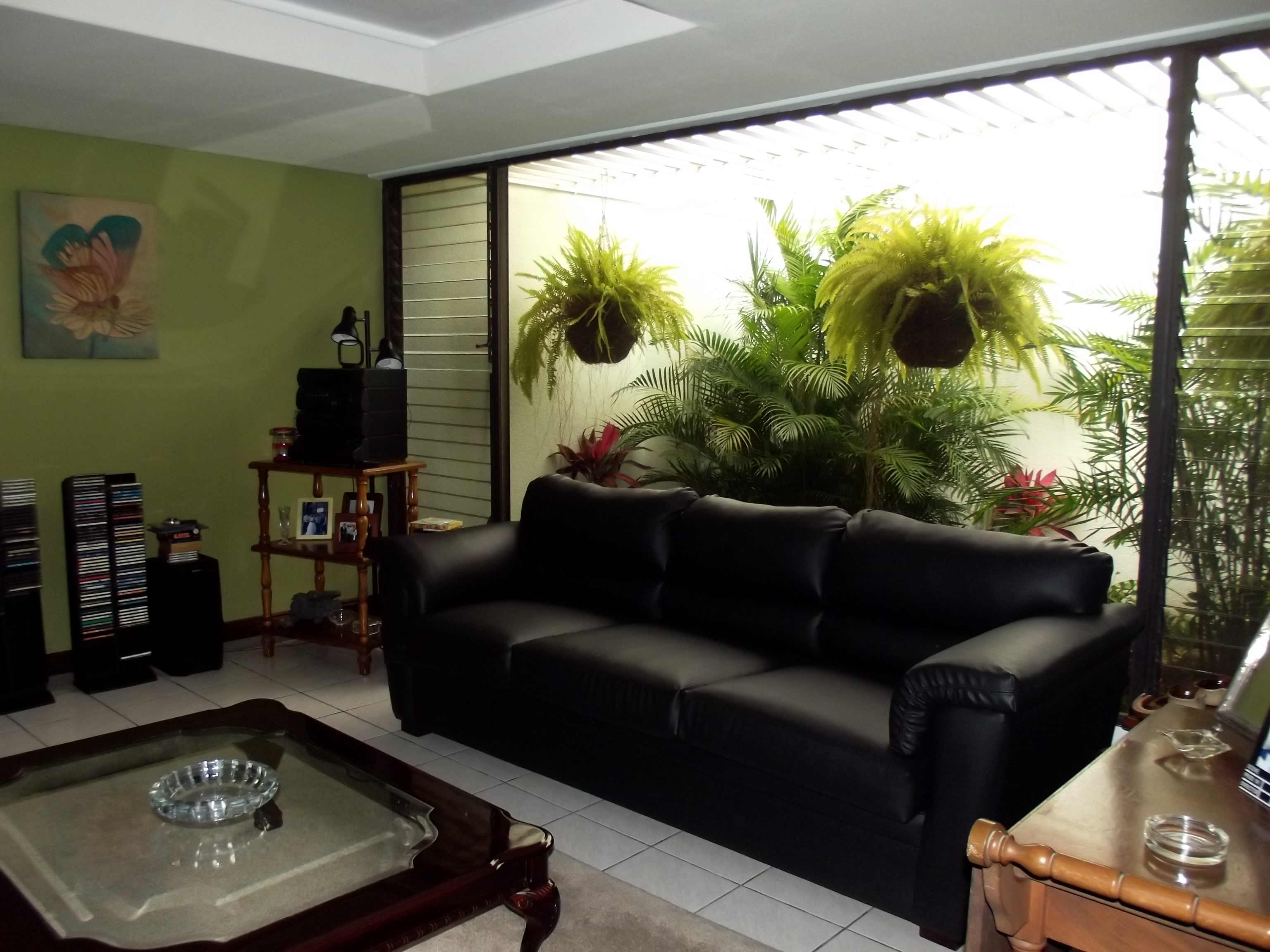 One level home with various green patios in Trejos.