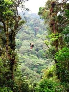 canopy costa rica