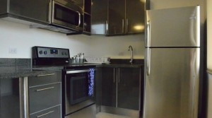 Spacious furnished modern apartment with common area, great location