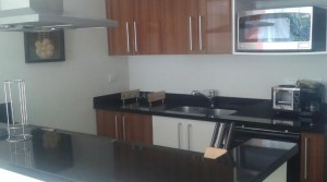 Furnished apartment in luxury high rise building