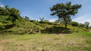 Lot with views in Jaboncillo