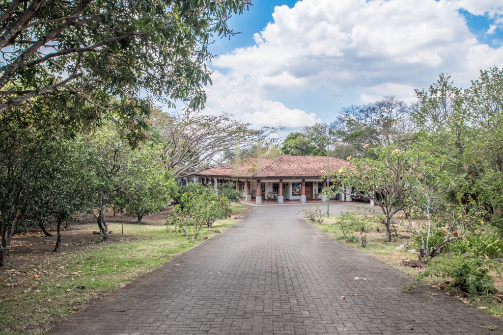Beautiful one level home with lots of character and private jungle on the back
