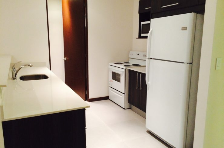 Modern furnished apartment Distrito 4