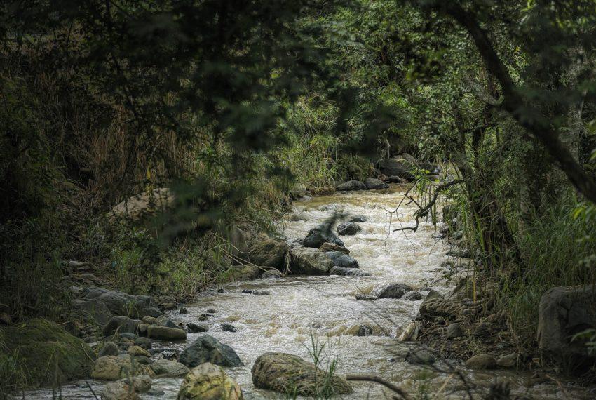 12 Río jpeg